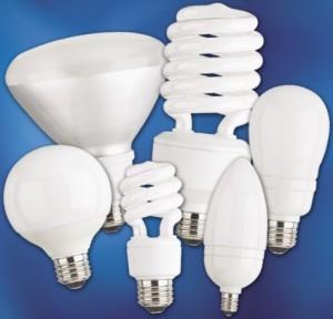 A Variety of CFL Bulbs